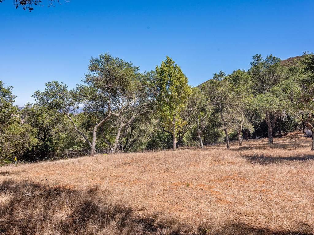14395-Thornton-Ct-Atascadero-015-010-Wooded-Area-MLS_Size