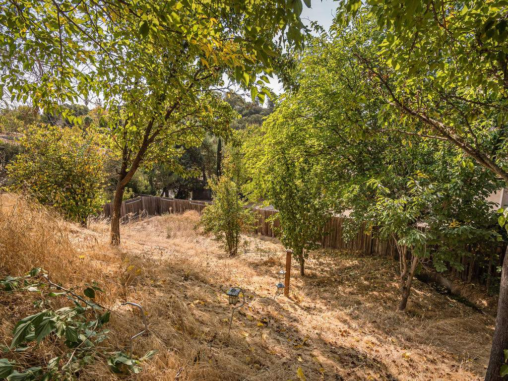 1591-Stormy-Way-Paso-Robles-CA-032-030-Back-Yard-MLS_Size