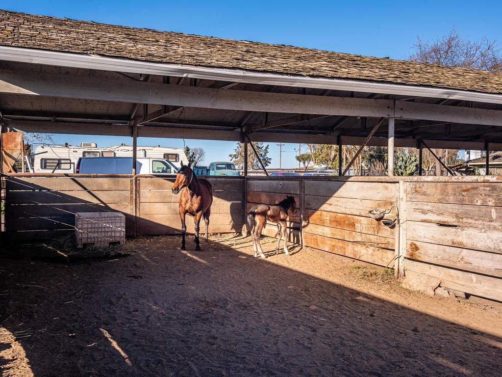 1880-Wellsona-Rd-Paso-Robles-051-050-Horse-Facilities-MLS_Size
