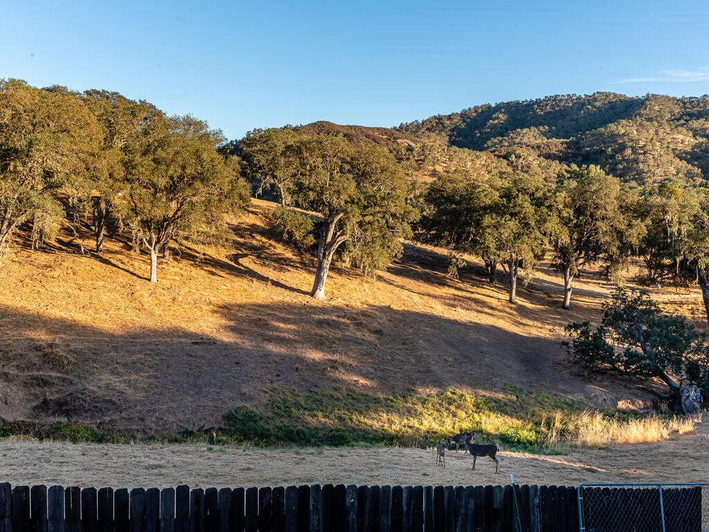 2311-Blue-Heron-Ln-Paso-Robles-040-038-Expansive-Views-MLS_Size