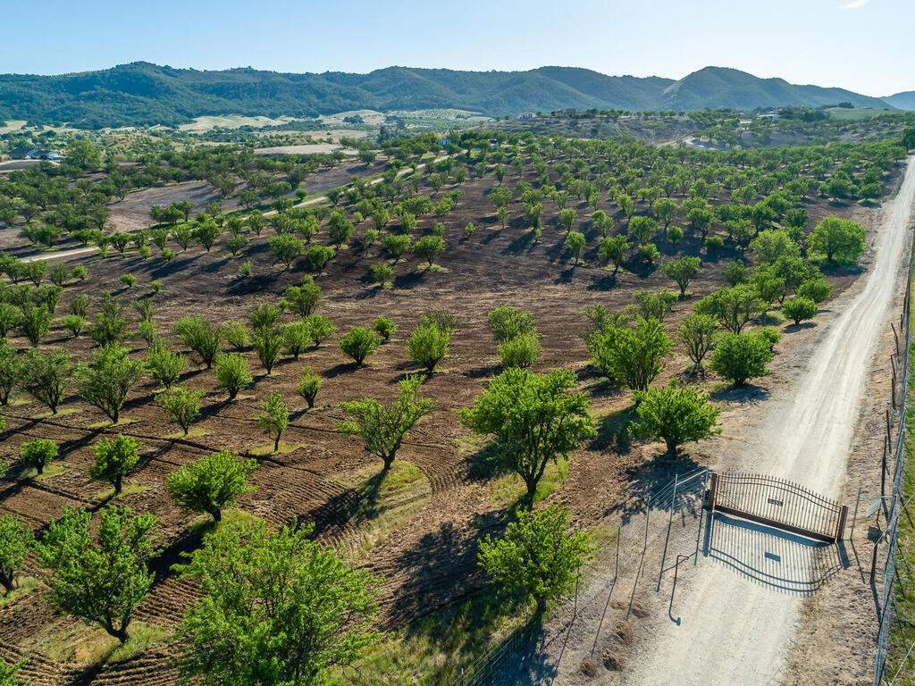 5495-Vista-Serrano-Paso-Robles-CA-93446-USA-071-142-Gate-MLS_Size