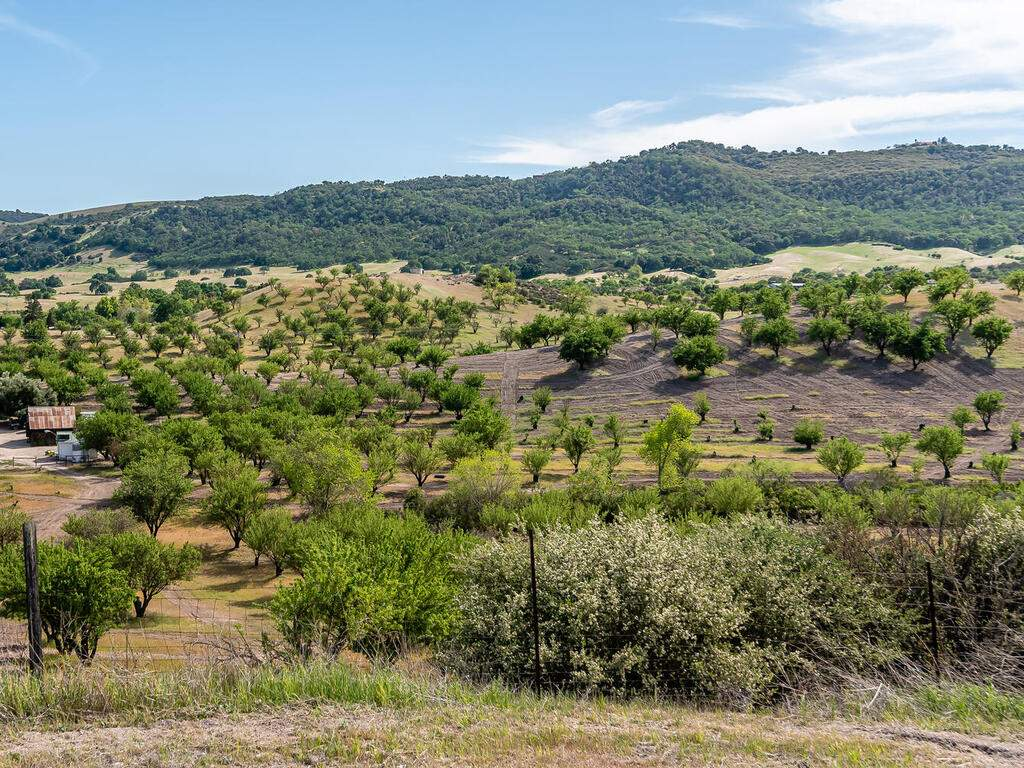 5495-Vista-Serrano-Paso-Robles-CA-93446-USA-105-179-Building-Pad-View-MLS_Size