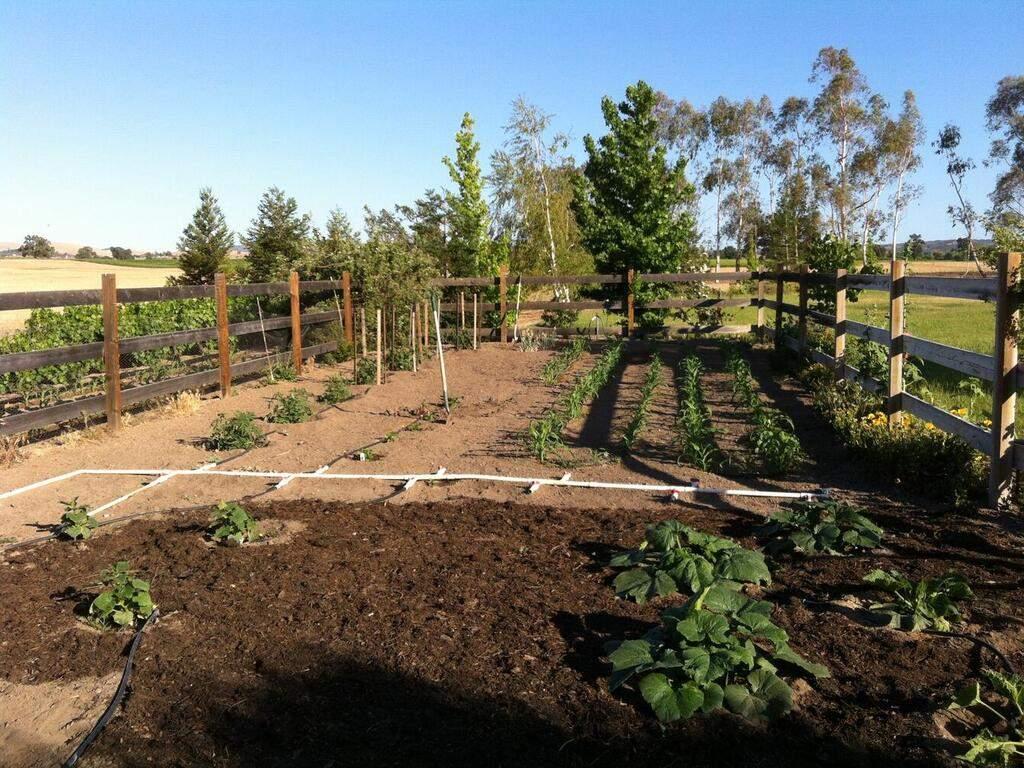 6404-ODonovan-Rd-Creston-CA-046-050-Great-Soil-MLS_Size