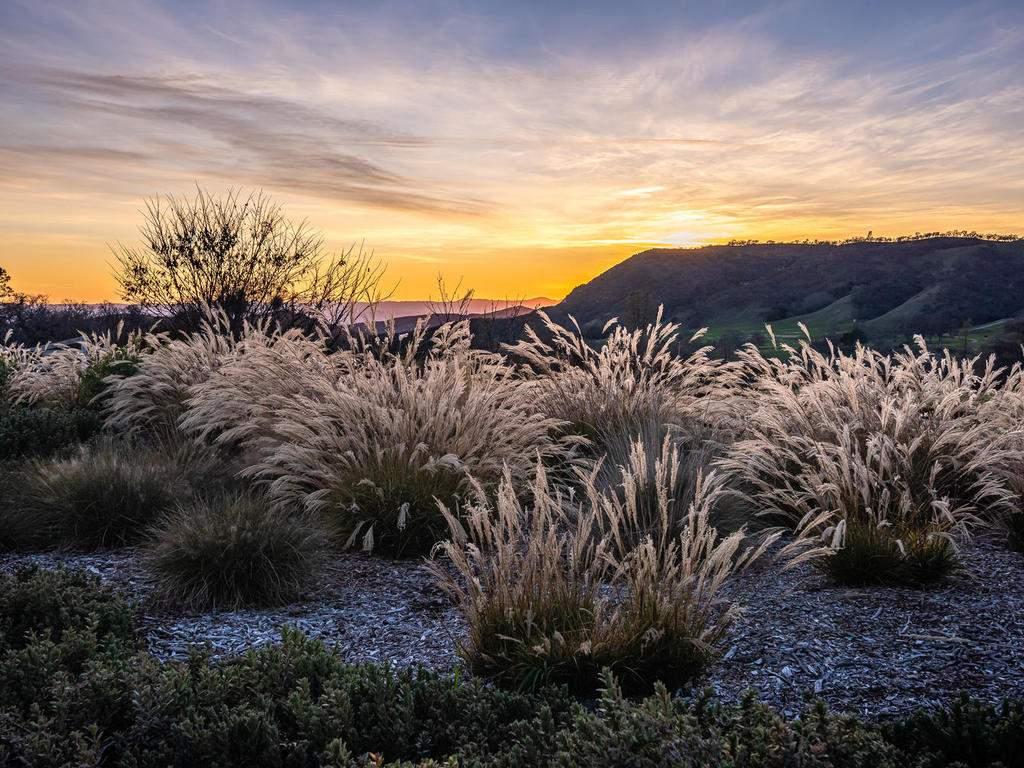 69300-Vineyard-Canyon-Rd-San-040-036-Sunset-Views-MLS_Size