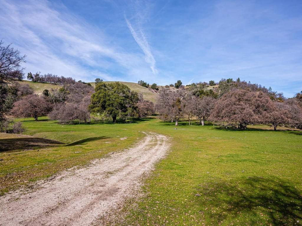 69300-Vineyard-Canyon-Rd-San-101-095-Ranch-Land-MLS_Size