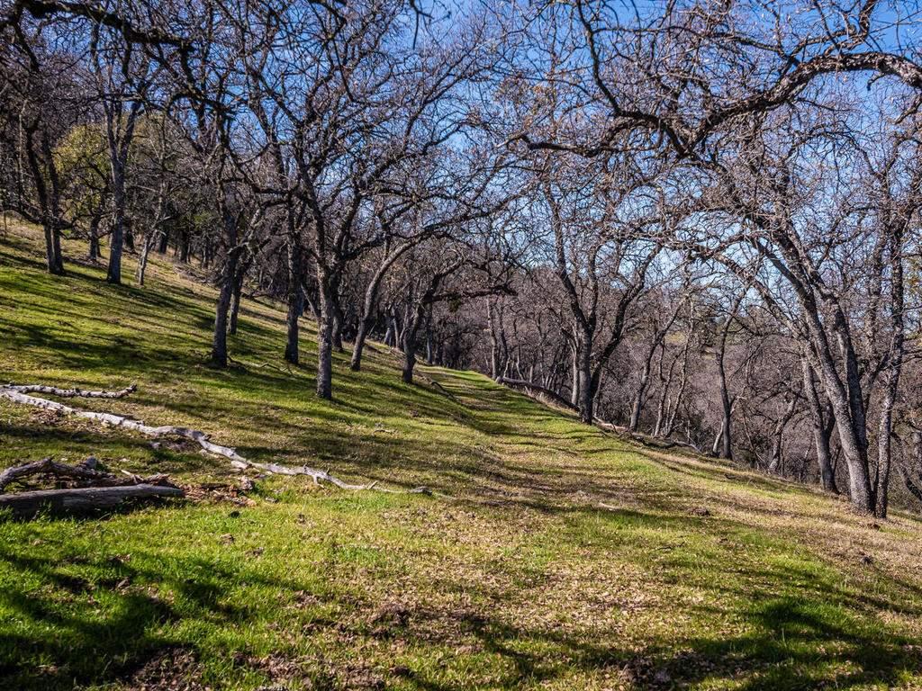 69300-Vineyard-Canyon-Rd-San-112-113-Ranch-Land-MLS_Size