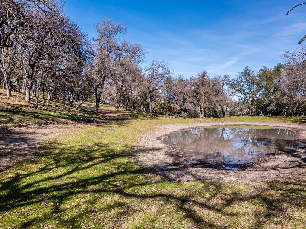 69300-Vineyard-Canyon-Rd-San-113-112-Numerous-Seasonal-Ponds-MLS_Size