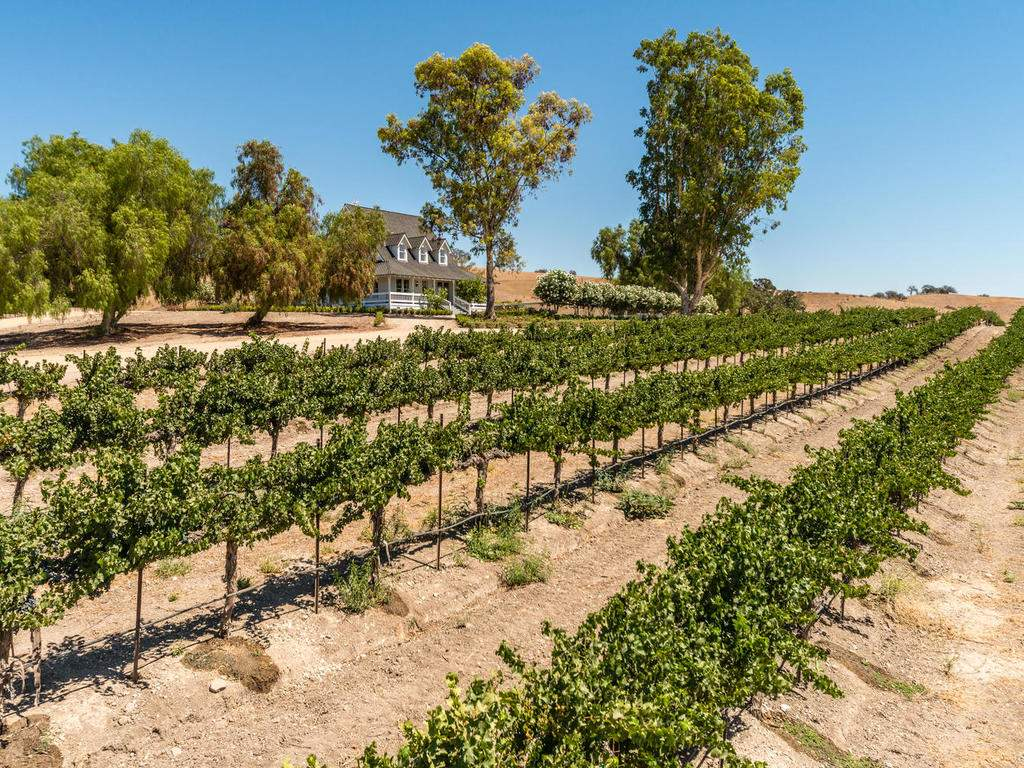 7320-Cross-Canyons-Rd-San-002-002-Home-and-Vineyard-MLS_Size