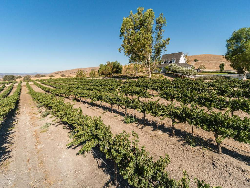 7320-Cross-Canyons-Rd-San-028-028-Home-and-Vineyard-MLS_Size