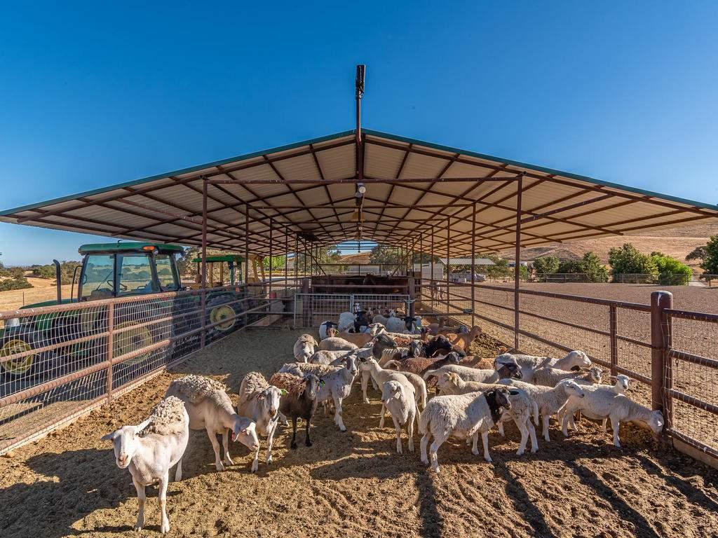 7997-Barnes-Rd-Paso-Robles-CA-049-050-Equestrial-Facilities-MLS_Size