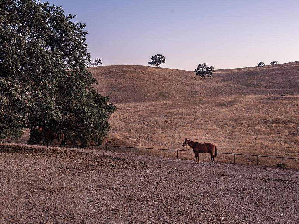 7997-Barnes-Rd-Paso-Robles-CA-062-056-Come-See-for-Yourself-MLS_Size
