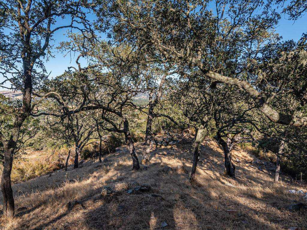 8330-San-Diego-Rd-Atascadero-009-010-Wooded-Property-MLS_Size