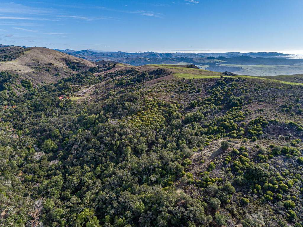 8455-Red-Mountain-Rd-Cambria-050-043-Aerial-View-MLS_Size