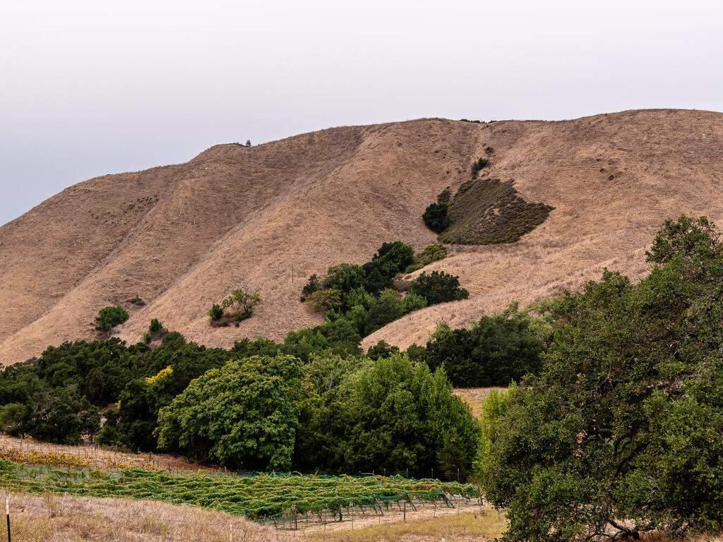 9299-Via-la-Montanita-Cambria-043-038-Expansive-Views-MLS_Size